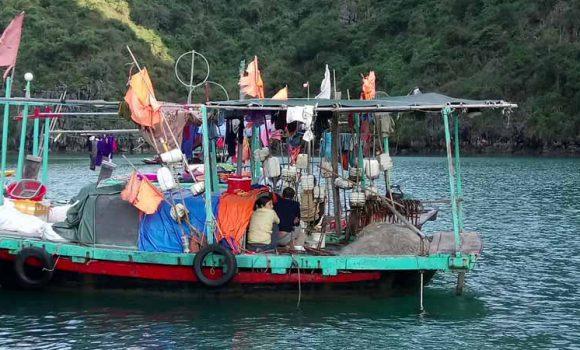 Kinh nghiệm du lịch bụi Hạ Long